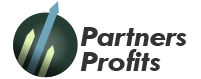 partners-profits.com